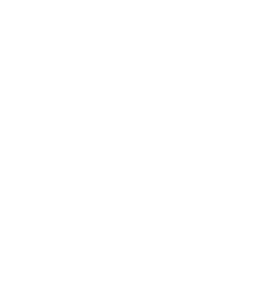 Goldstein Business Accelerator